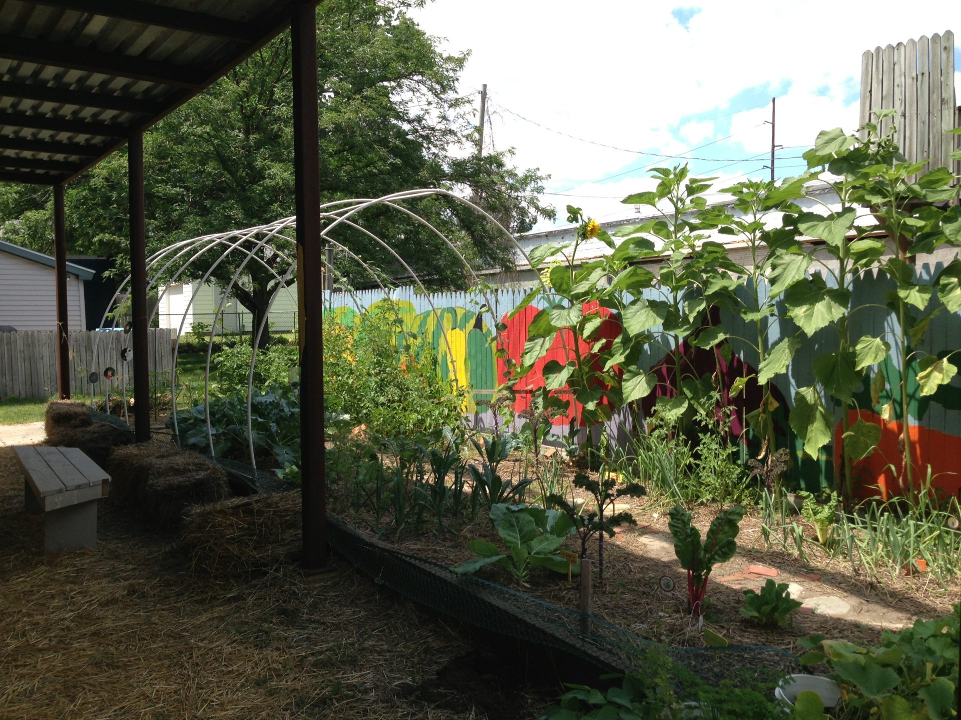 Lansing yoga studio in community garden tour
