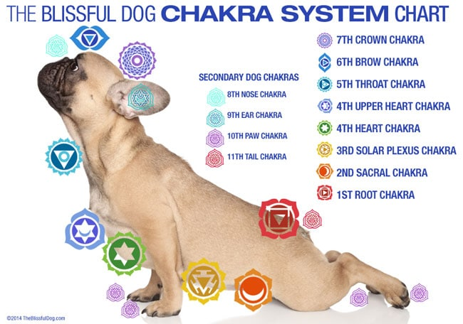 how to go deep into your chakras then clear them