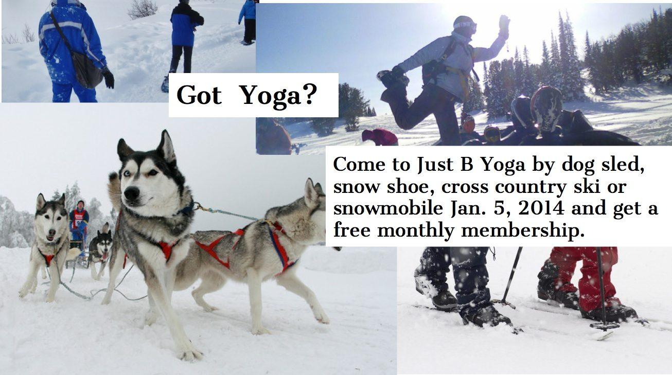 #Snowpocalypse #Yoga challenge