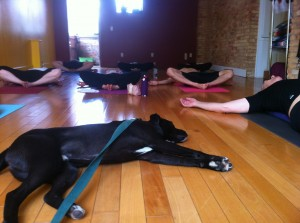 King during a yoga class in spring 2013.