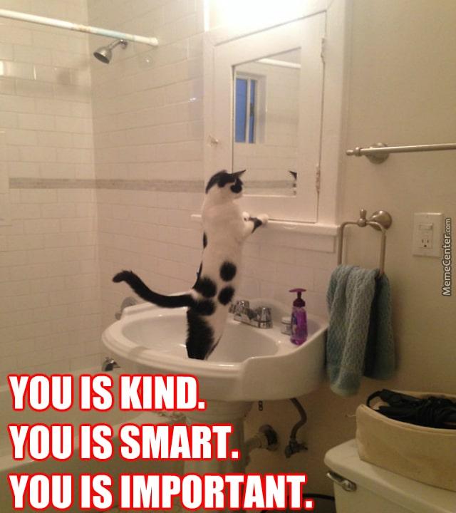 positive-cat_o_3756503